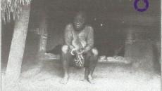 suakoko